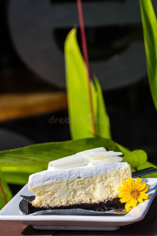 Bolo de queijo branco do chocolate foto de stock