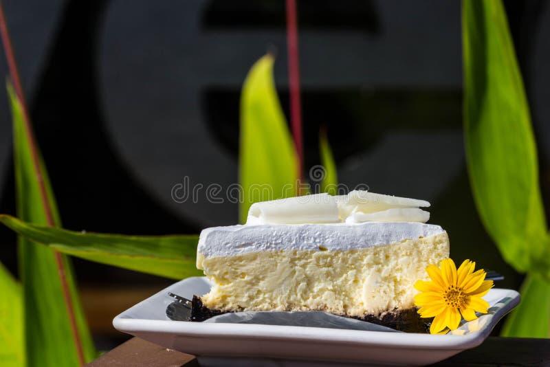 Bolo de queijo branco do chocolate imagem de stock