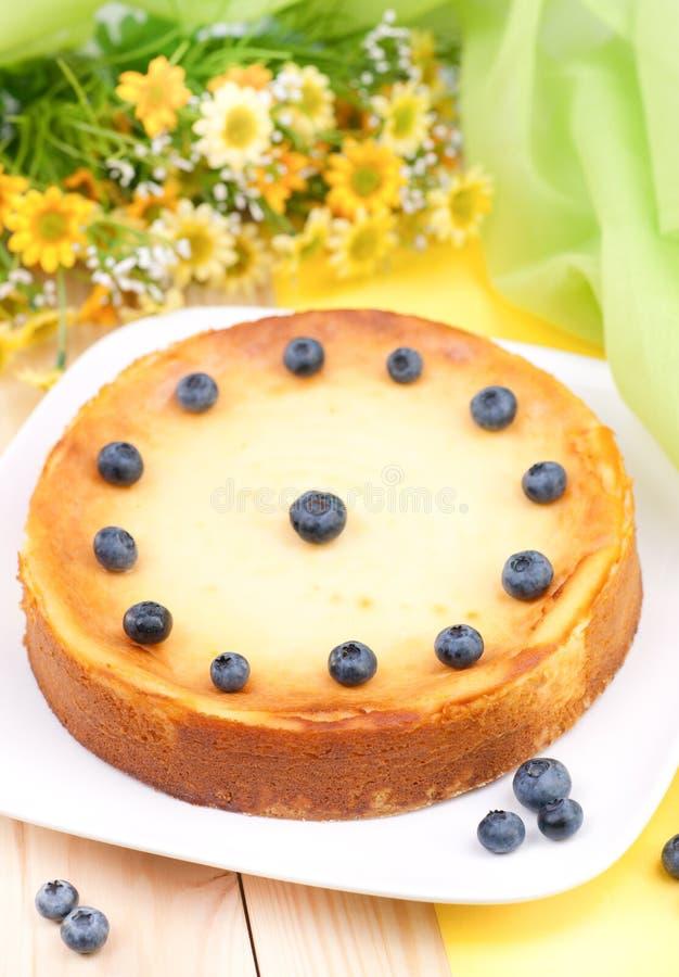 Bolo de queijo fresco fotografia de stock