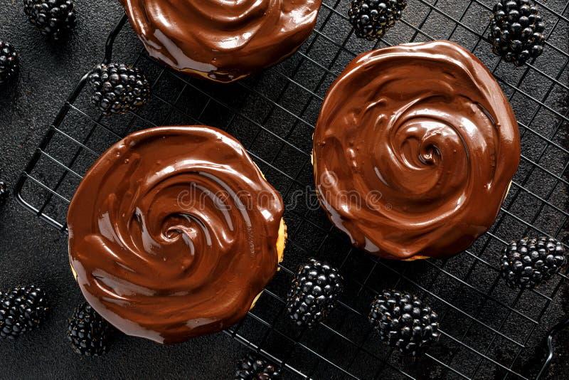Bolos de queijo pequenos com cobertura em chocolate em uma bandeja refrigerando no fundo escuro, vista superior, close-up fotos de stock