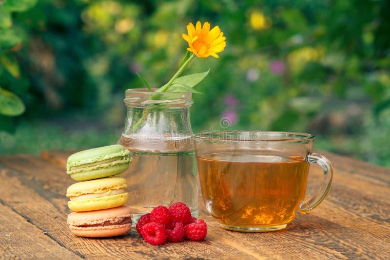 Bolos deliciosos dos bolinhos de am?ndoa da cor diferente, flor do calendula com uma haste em um frasco de vidro e copo do ch? ve fotos de stock