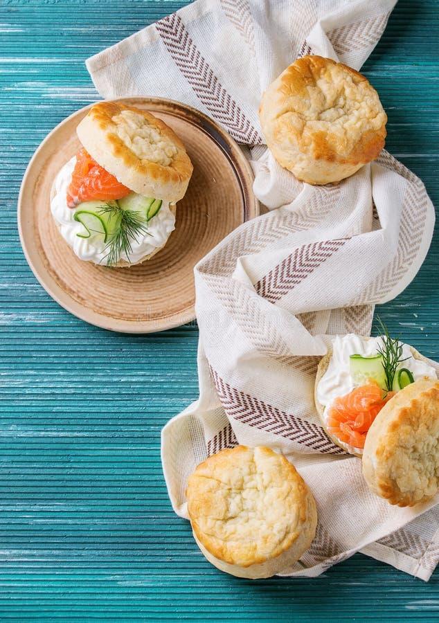 Bolos do queijo com salmões foto de stock