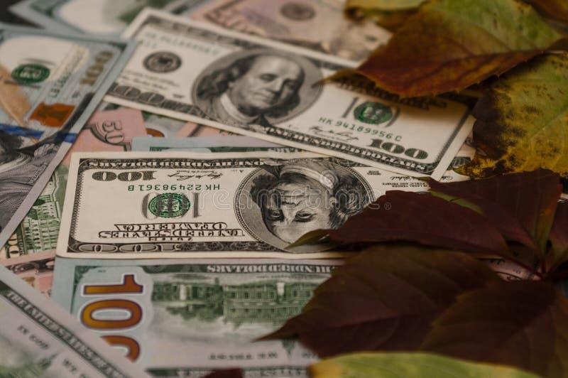 Bolsa de acción con el dinero, contribución al capital imagen de archivo libre de regalías