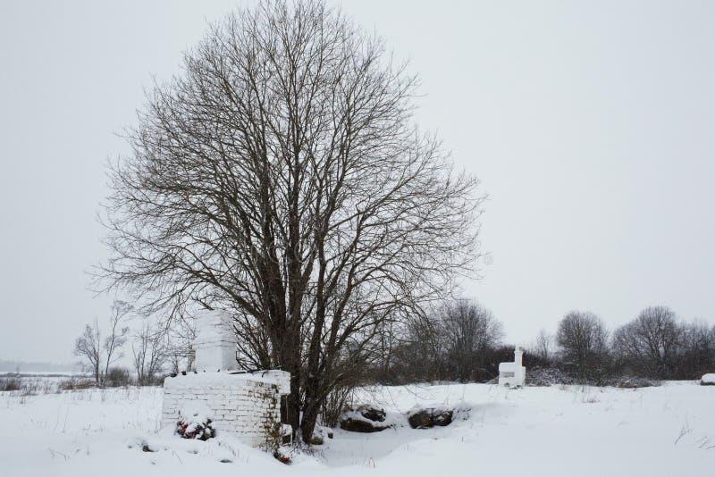 Bolshoye Zarechye, village sur le territoire de la région de Léningrad, Russie, image libre de droits
