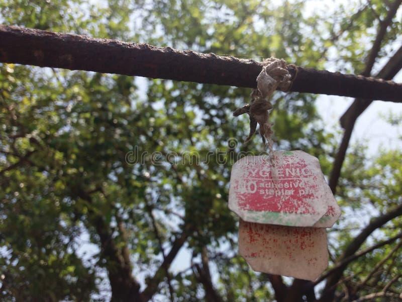Bolsita de té en un Rod fotografía de archivo libre de regalías