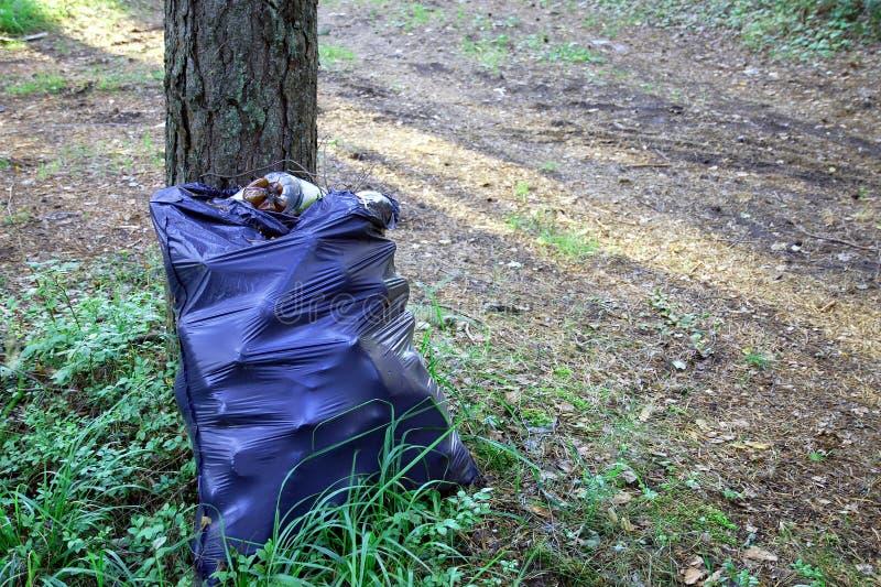 Bolso de basura negro grande con la basura plástica en bosque fotografía de archivo libre de regalías