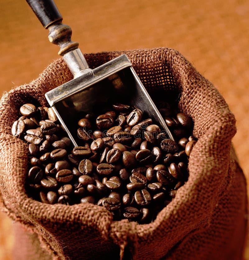 Bolso de despido con los granos de café foto de archivo libre de regalías