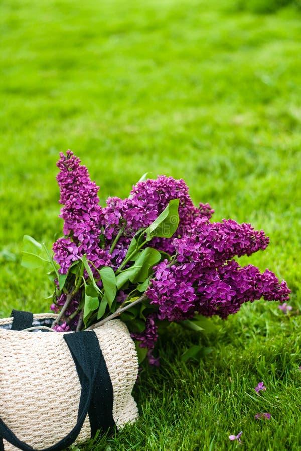 Bolso del verano con las flores púrpuras vivas de la lila en el fondo de la hierba verde imagenes de archivo