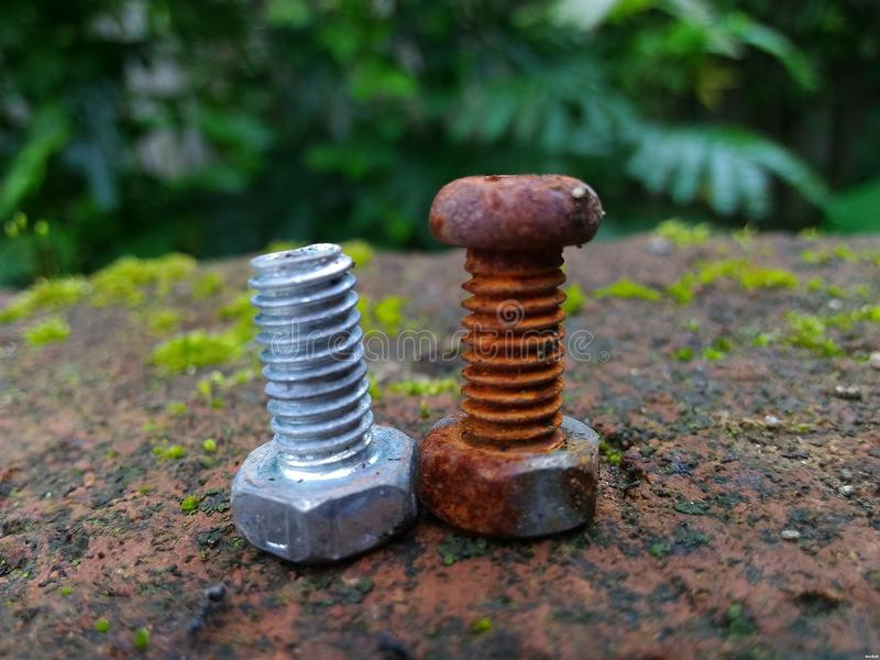 Download Bolt stock image. Image of different, such, rusty, name - 83700737