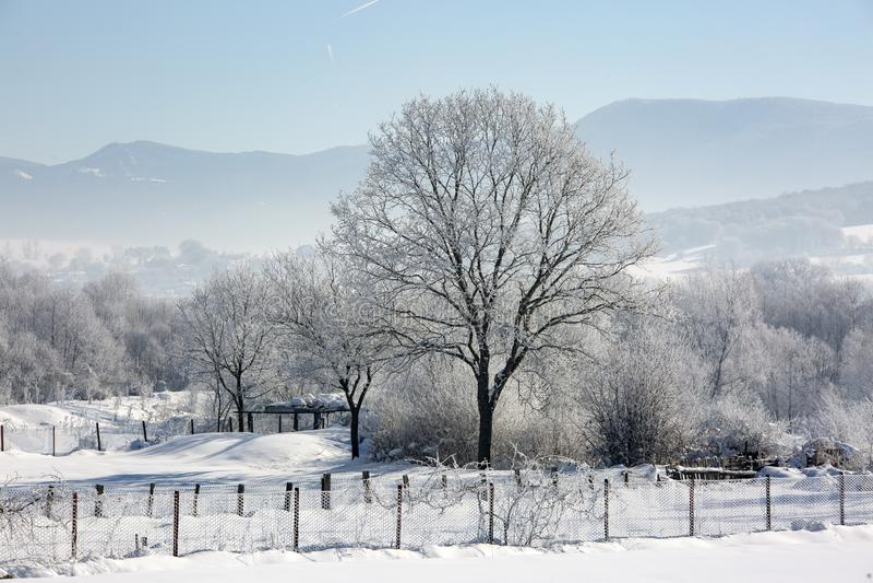 Bolu / Turkey, winter snow season landscape. Travel concept photo.  stock image