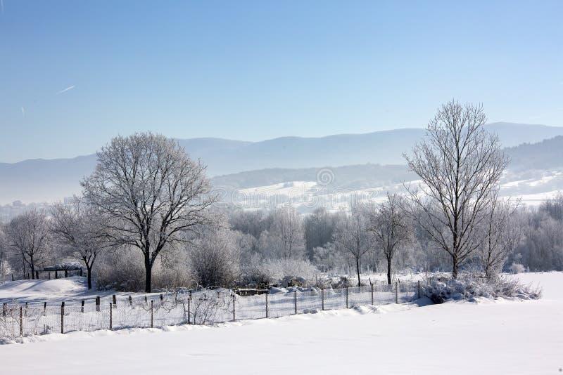 Bolu / Turkey, winter snow season landscape. Travel concept photo.  stock photography