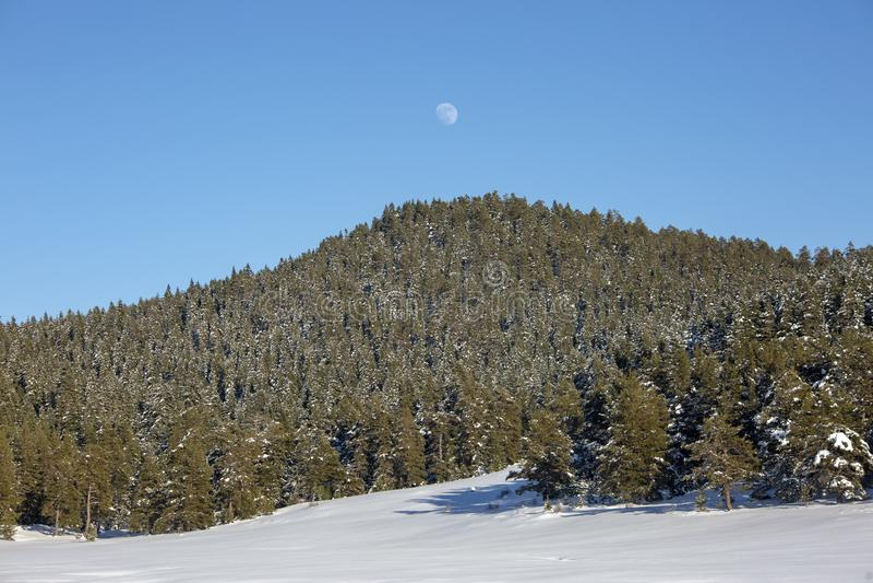Bolu / Turkey, winter snow season landscape. Travel concept photo.  stock photo