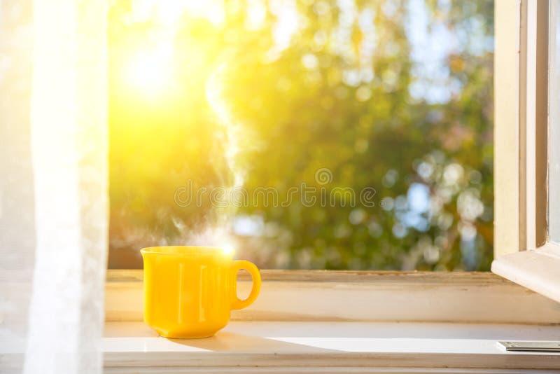 Bom dia! Copo na janela com sol foto de stock royalty free