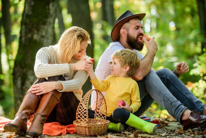 Bom dia para o piquenique da mola na natureza Conceito do dia da fam?lia Família feliz com o menino da criança que relaxa ao cami imagem de stock