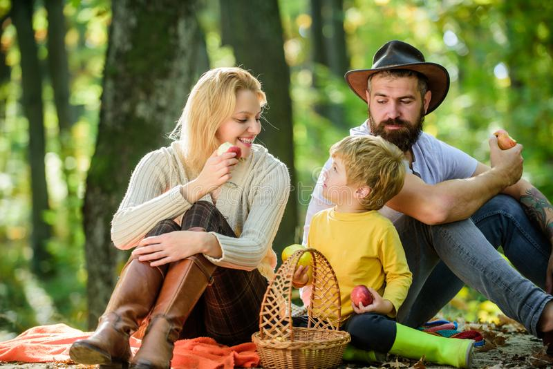 Bom dia para o piquenique da mola na natureza Unido com a natureza Conceito do dia da família Família feliz com quando de relaxam imagens de stock royalty free