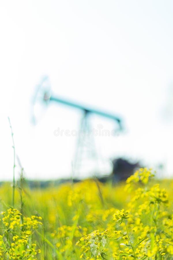 Bomba de aceite o instalación de la bomba en un campo floreciente Problemas de la producción ambiental fotografía de archivo