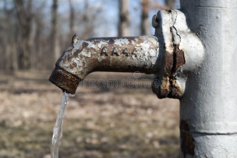 Bomba de agua en bosque fotografía de archivo libre de regalías
