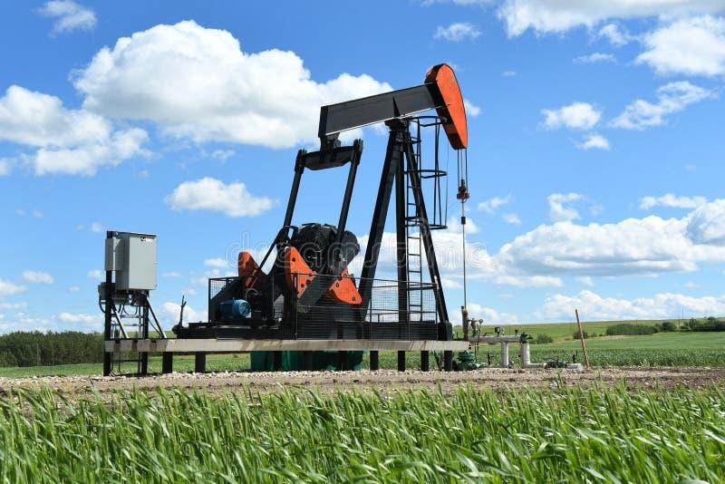Bomba Jack do campo petrolífero foto de stock