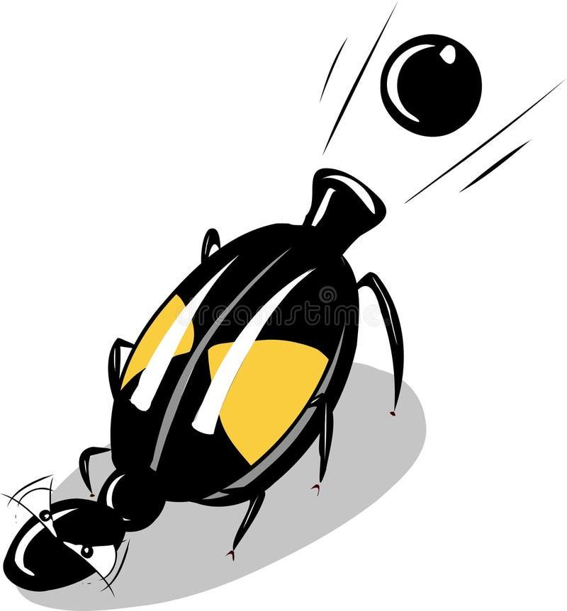 Free Bombardier Beetle Stock Image - 33740341