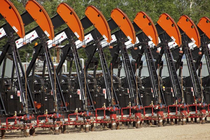 Bombas de óleo em Alberta fotografia de stock royalty free