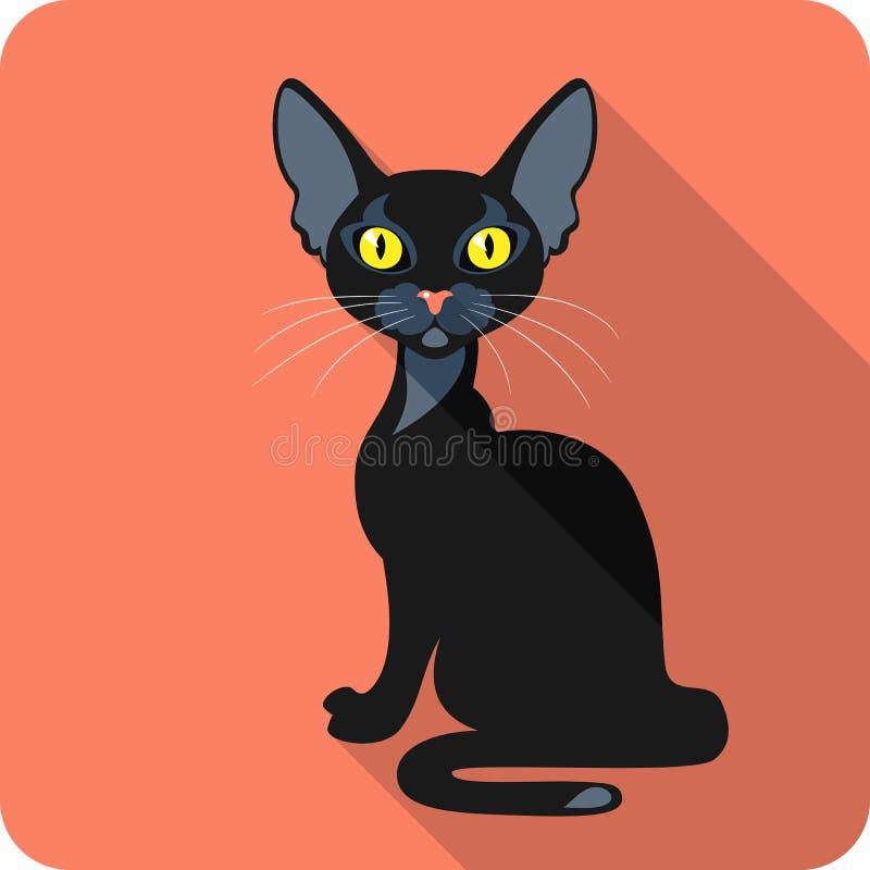 Bombay Black Cat icon flat design royalty free stock photos