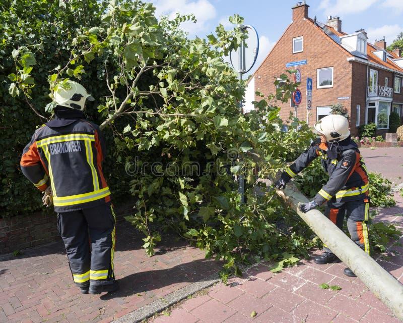 Bombeiros derrubam árvores caídas na cidade holandesa de Voorschoten, nos países vizinhos, após tempestade de verão imagens de stock