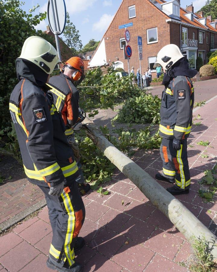 Bombeiros derrubam árvores caídas na cidade holandesa de Voorschoten, nos países vizinhos, após tempestade de verão imagens de stock royalty free