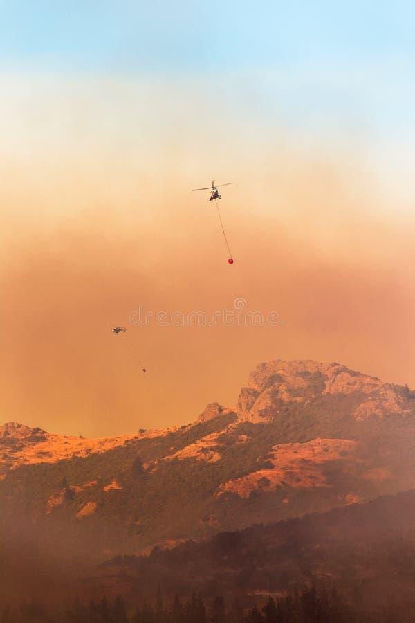 Bomberos que trabajan para apagar el incendio forestal imágenes de archivo libres de regalías