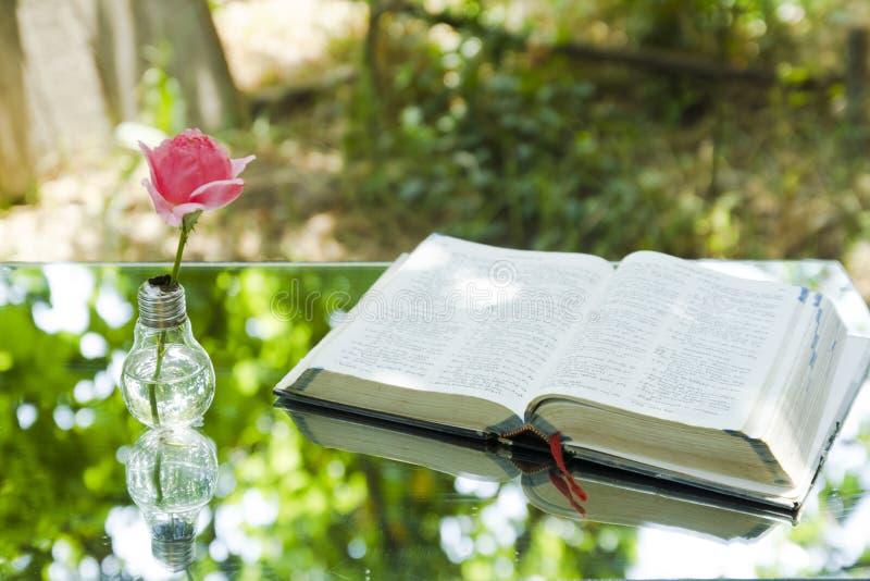 Bombilla con la biblia del libro fotos de archivo libres de regalías