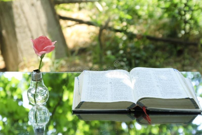 Bombilla con la biblia del libro fotografía de archivo