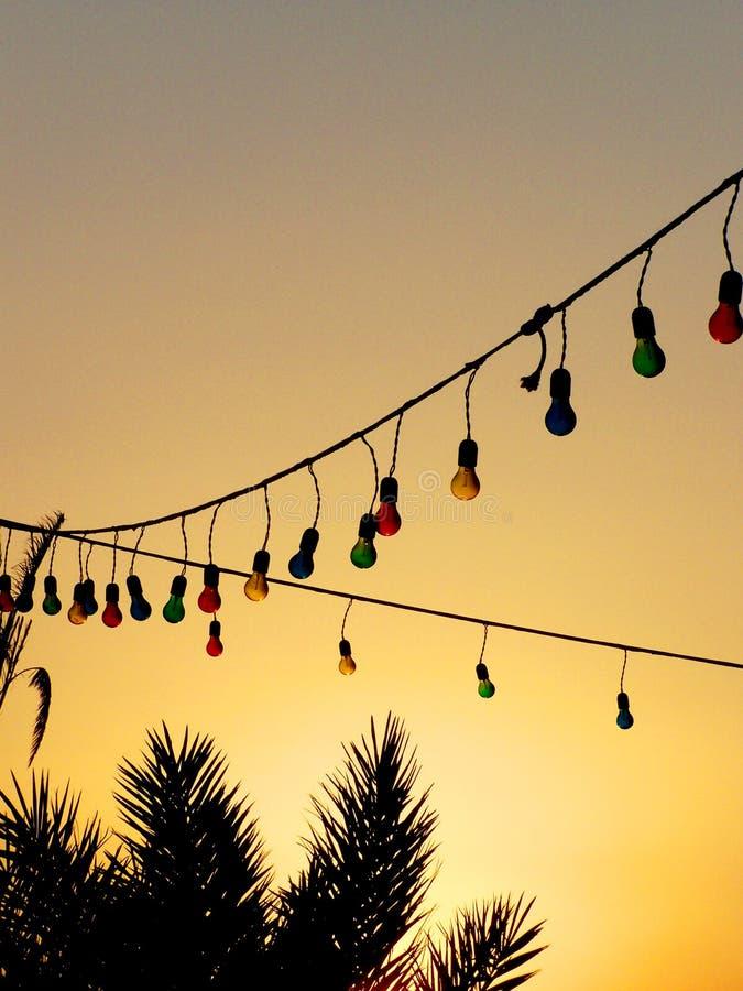 Bombillas y palmeras coloridas en la puesta del sol imagen de archivo