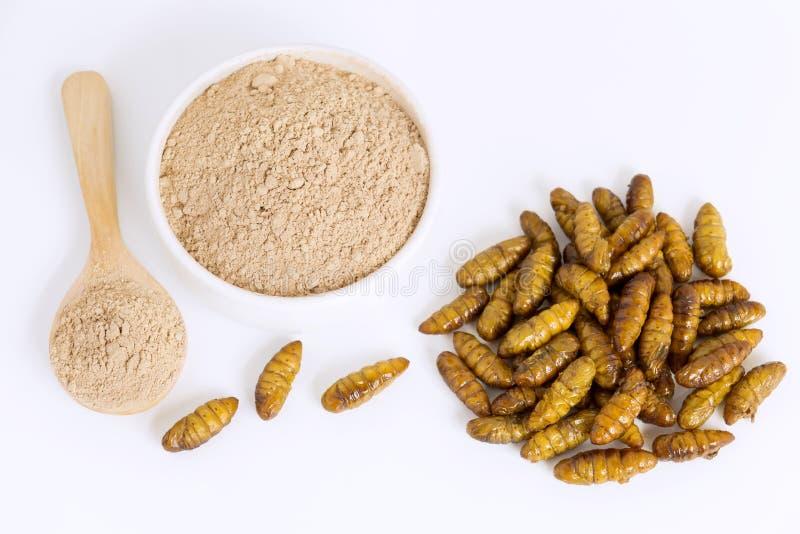 Bombyx van zijderupspoppen het poeder van Mori Insectenbloem voor het eten als voedselpunten van gekookt insectvlees in kom en le stock afbeeldingen