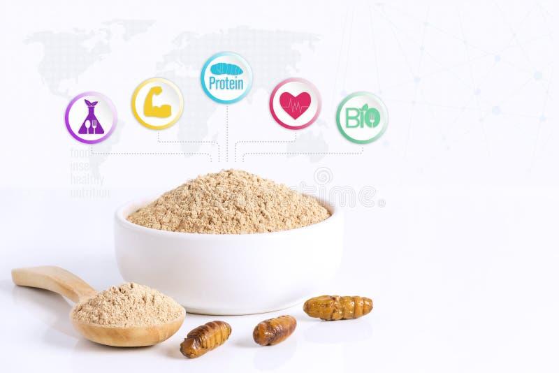 Bombyx van zijderupspoppen het poederpunten van Mori van gekookt insectvlees voor het eten als eetbaar voedsel worden gemaakt en  stock illustratie