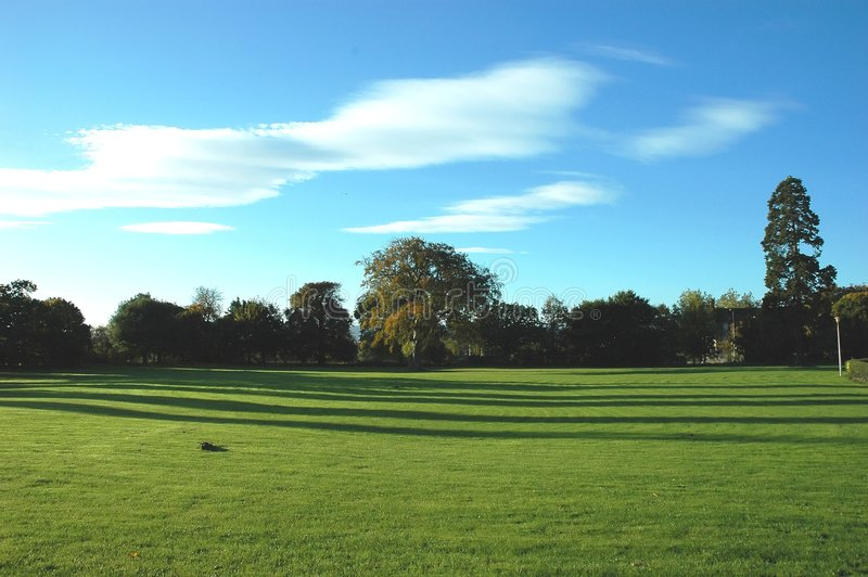 Download Bomen stock afbeelding. Afbeelding bestaande uit heuvels - 294611