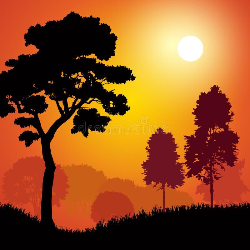 Bomen bij zonsondergang vector illustratie