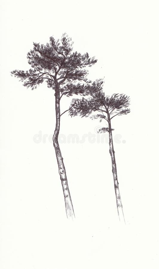 Bomen in Biro vector illustratie
