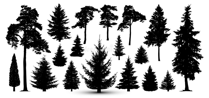 Bomen bosreeks, vector Silhouet van pijnboom, sparren stock illustratie