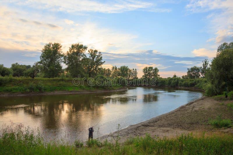 Bomen dichtbij rivier in de avond royalty-vrije stock afbeelding