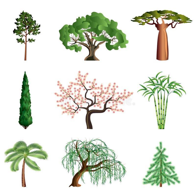 Bomen die op witte vectorreeks worden geïsoleerd vector illustratie