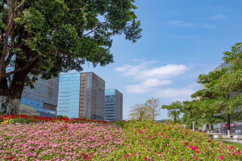 Bomen en kleine leuke rode en roze bloemen in perceel bij bedrijfsdistrictsplein op bureaugebouwen en duidelijke blauwe hemelacht stock afbeelding