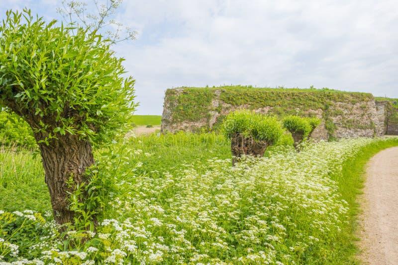 Bomen en wilde bloemen op een gebied langs een historische vesting in de lente royalty-vrije stock foto's