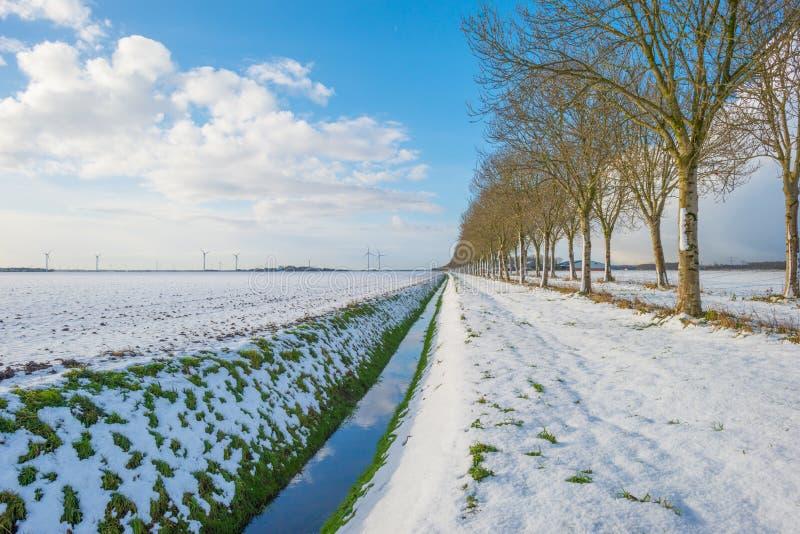De 20+ beste afbeeldingen van Winter 18 19 | damestruien