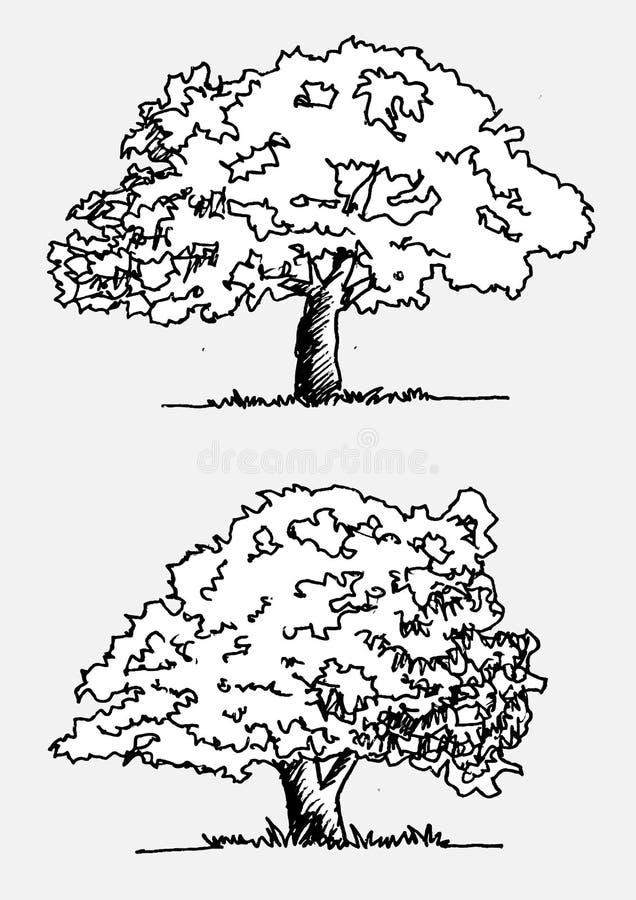 Bomen met bladeren royalty-vrije illustratie