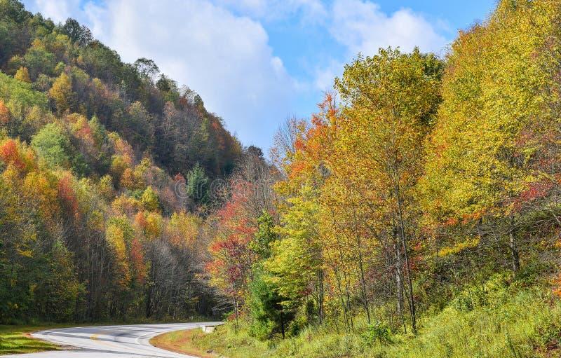 Bomen, met gele en scharlaken bladeren, hoog in de bergen worden behandeld die De scène van de herfst de kleurrijke achtergrond stock afbeeldingen