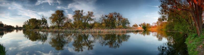 Bomen op rivier royalty-vrije stock foto