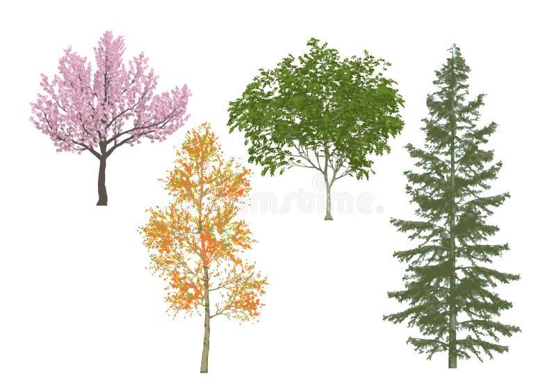 Bomen op witte achtergrond. vector illustratie