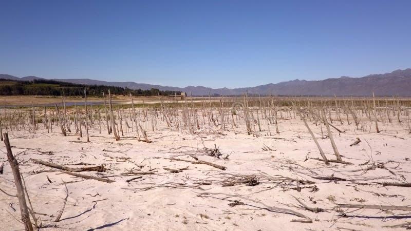 Bomen in Theewaterskloof-Dam, de hoofddam van Cape Town ` s, met uiterst - lage niveaus royalty-vrije stock afbeelding