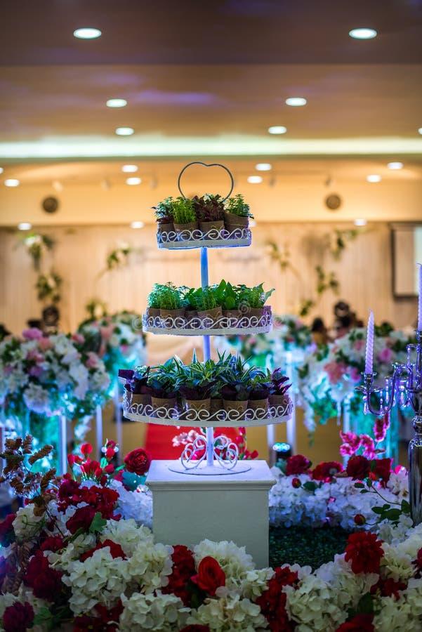 Bomen van de de cakeinstallatie van het close-up de mooie huwelijk royalty-vrije stock foto's