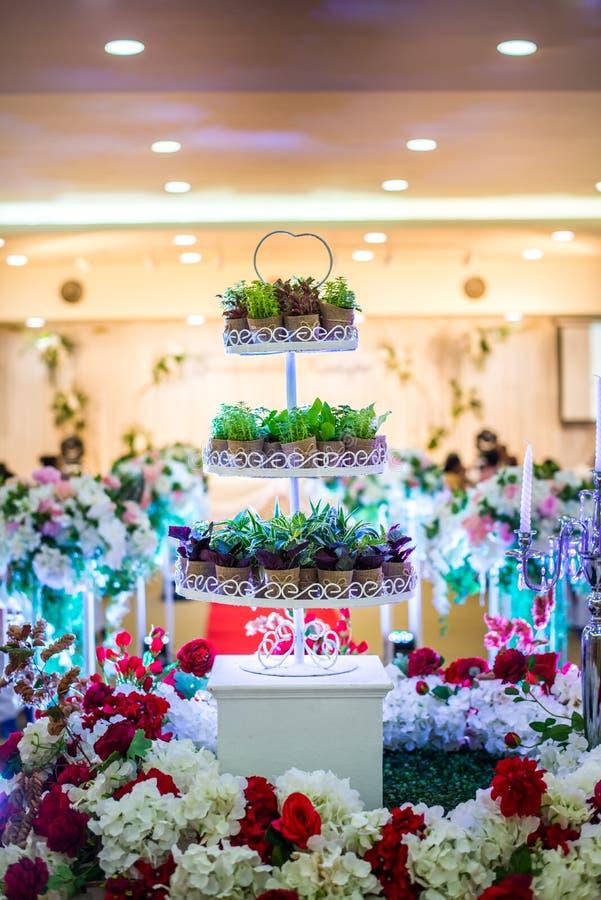 Bomen van de de cakeinstallatie van het close-up de mooie huwelijk stock afbeelding