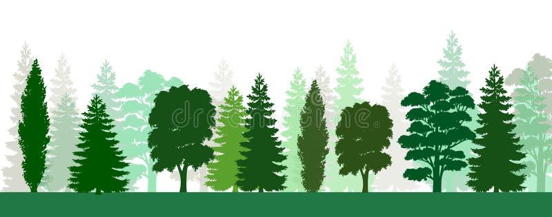 Bomenpijnboom en spar en sparren, Kerstmisboom Naald bos, vectorsilhouet Altijdgroen Bos, vector stock illustratie